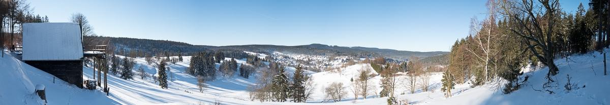 2017-01-22-Winterwald_011
